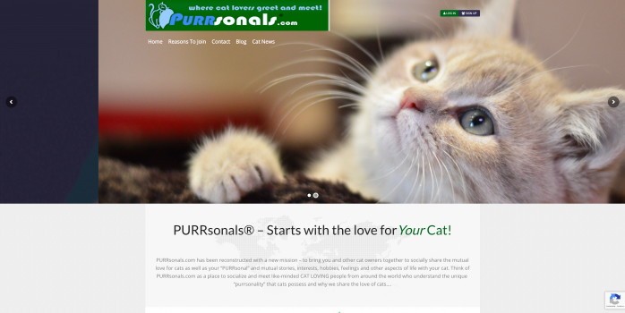 PURRsonals-Cat-Lovers