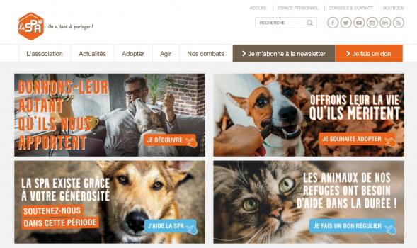 Société-Protectrice-des-Animaux-SPA-association-protection-animale